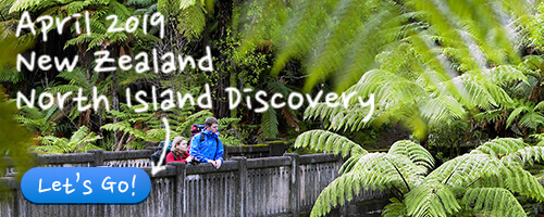 April 2019 - New Zealand North Island Discovery